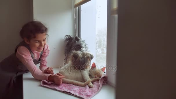 girl teen and pets cat and dog a looking out the window, pet cat sleeps