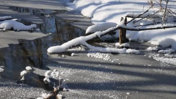 flusso della foresta scorre nel paesaggio neve natura foresta invernale,