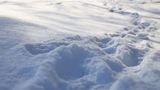 stopy lidské přirozenosti v sněhu zimní krajina cestě hodně sněhu