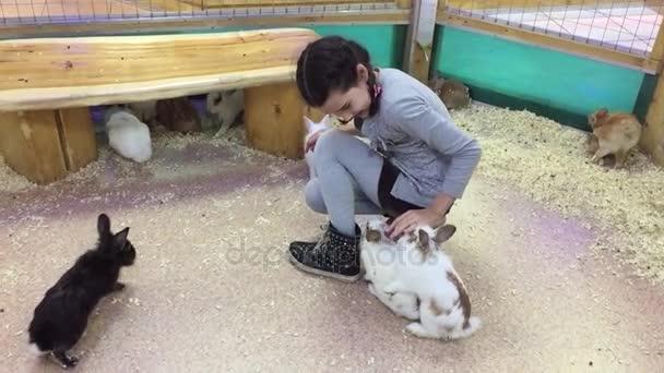 Dívka a králíka. Dospívající dívka hladila malých králíků, kontaktní zoo