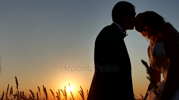 Romantické svatební polibek mladý pár silueta. milující pár při západu slunce přírody muž a dívka silueta