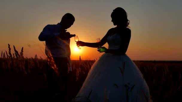 Silueta si sklenku šampaňského vína. Romantický pár na přírodní siluetu sluneční světlo sunset