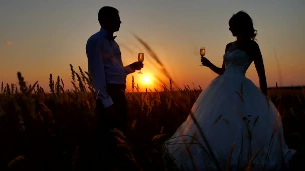 Silueta si sklenku šampaňského vína. Romantický sluneční světlo pár na přírodní siluetu sunset