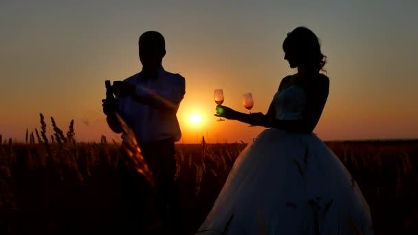 Silueta si sklenku šampaňského vína. Romantický pár na přírody silueta západ slunce