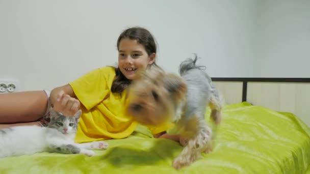 Krásná dívka teen a kočka. kočka dívka a psa hrát na přátelství postel