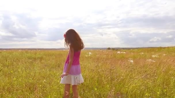 gyermek lány megy a természet mező fű nyári napfény lassított videóinak Steadicamnél. gyermekkori koncepció videók lány kölyök jellegűek kint életmód