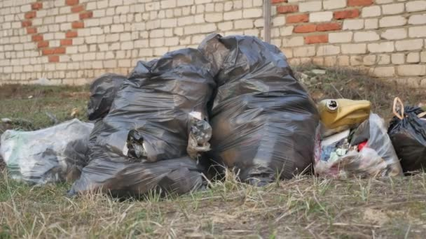 Pytle na odpadky, roztrhané balíček a recyklaci zelené bin znečištění životního prostředí venku