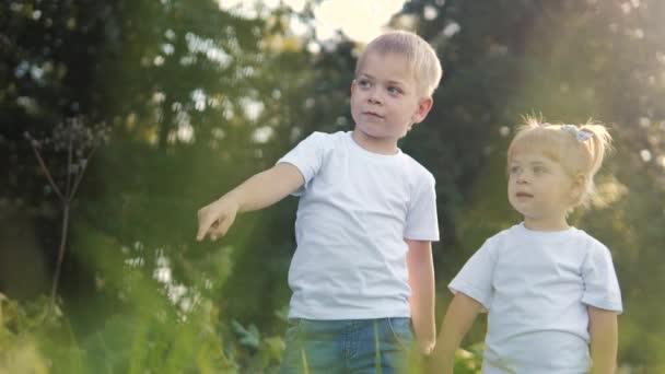 Šťastná rodina: malý chlapec a dívka bratr a sestra držet ruku v přírodě šťastný děti koncept. děti se podívají do ukazuje svou ruku do vzdálenosti zpomalit video životní styl. dětské děti si hrají