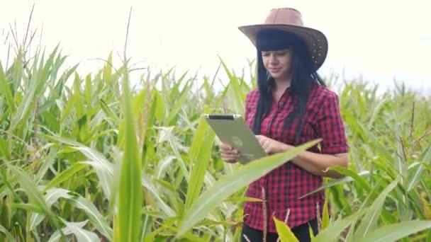 inteligentní ekologický životní styl zemědělství koncepce. zemědělec dívka rostlina výzkumník používá a dotknout tablet při kontrole kukuřice na farmě. žena s digitálním tabletem pracuje v terénu