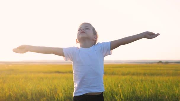 malé dětské ruce přitahuje do nebe koncept šťastný rodinný životní styl náboženství. malý chlapec zavřel oči a rozpřáhl paže po stranách na přírodu v parku při západu slunce zpomalené video