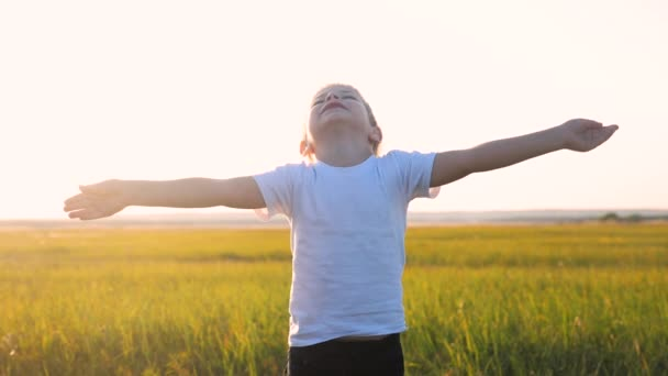 kleine Kinderhände in den Himmel gezogen Konzept glückliche Familienreligion Lebensstil. Kleiner Junge schloss die Augen und breitete die Arme seitlich über die Natur im Park bei Sonnenuntergang aus Video
