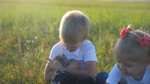 Kleine Kinder und Katze Konzept glückliche Familie Zeitlupe Video. Geschwister spielen mit einem kleinen Kätzchen im Sommer im Park bei Sonnenuntergang. Mädchen und Junge spielen
