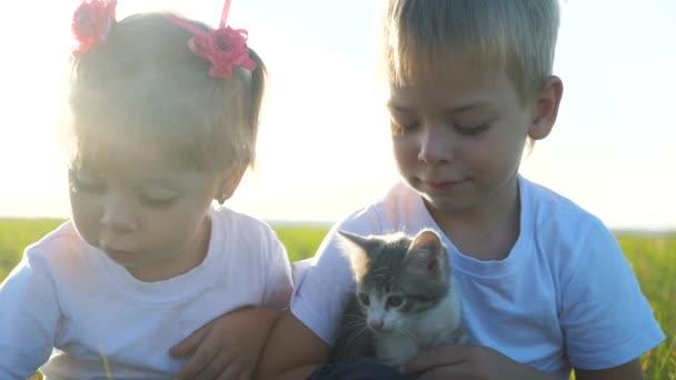 Kleine Kinder und Katze Konzept glückliche Familie Zeitlupe Video. Die Geschwister spielen mit einem kleinen Kätzchen im Sommer im Park bei Sonnenuntergang. Mädchen und Junge sind