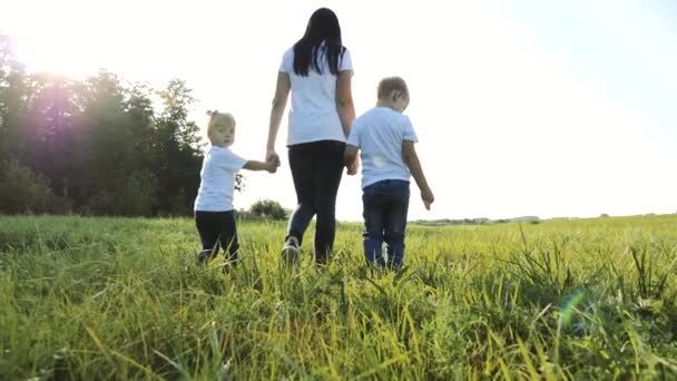 šťastná rodinná týmová práce matka, mladší bratr a sestra procházka v parku příroda drží ruce zpomalené video koncept. Máma, děti chlapec a dívka dcera a syn držet ruce jít na zelené trávě slunce léto