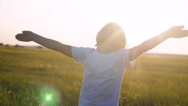Kleine Kinderhände in den Himmel gezogen Konzept glückliche Familienreligion. Kleiner Junge schloss die Augen und breitete seine Lifestylearme seitlich über die Natur im Park bei Sonnenuntergang aus Video