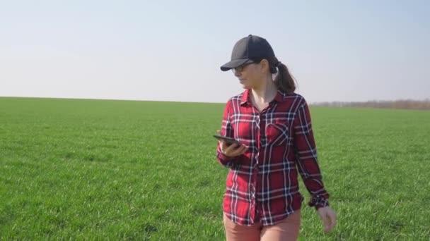 dívka farmář červený krk životní styl s digitálním tabletem procházky půdy pro setí na zeleném poli. koncepce ekologického zemědělství. žena pracovnice studuje zimní zelenou pšenici plodiny pracuje v terénu