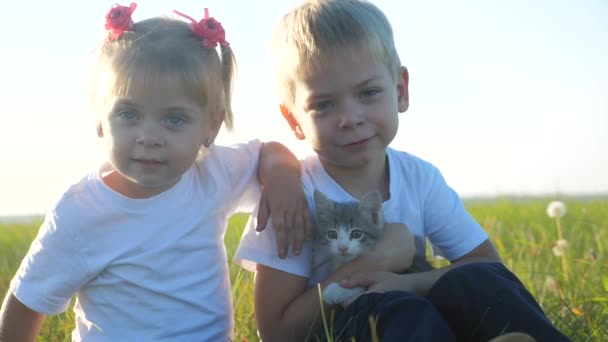 Kleine Kinder und Katze Konzept glückliche Familie Zeitlupe Video. Die Geschwister der Kinder spielen mit einem kleinen Kätzchen auf dem natürlichen Sonnenuntergang Sommer Lifestyle im Park. Mädchen und Junge sind