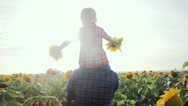 lifestyle happy family concept fathers day slow motion video.father and son walk on the field of sunflowers farmers funny funny video. happy family dad man rolls around the neck of a little boy son