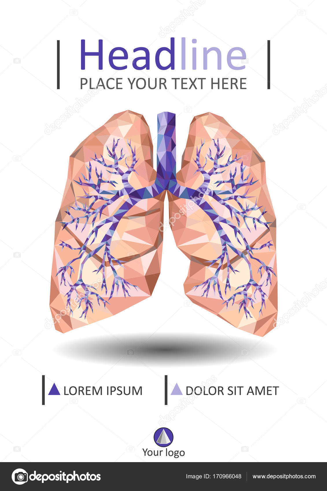 Human lungs with trachea, bronchus, bronchi, carina, in low poly ...