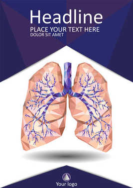Human lungs with trachea, bronchus, bronchi, carina, in low poly
