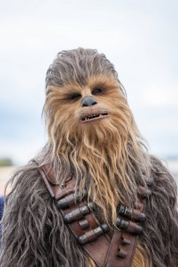 CANNES, FRANCE - MAY 15,  2018: Chewbacca attends the photocall for 'Solo: A Star Wars Story' during the 71st annual Cannes Film Festival