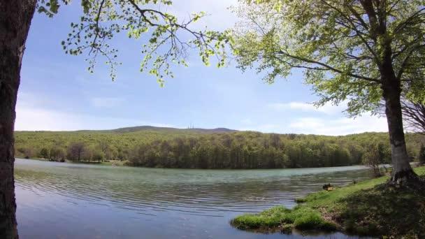Příroda, lesní krajina s nebe a mraky, Časosběr