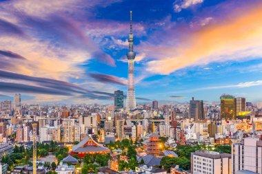 Tokyo, Japan Skyline