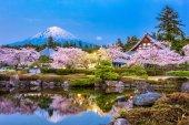 Shizuoka, Japan in Spring