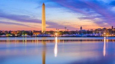 Washington DC in Spring