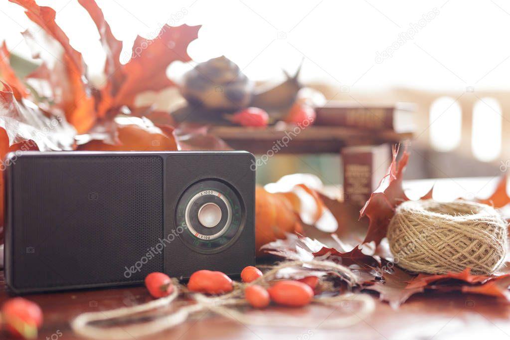 retro radio receiver on a beautiful fall still life. figurine sn