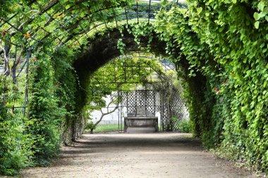 Compiegne gardens, France