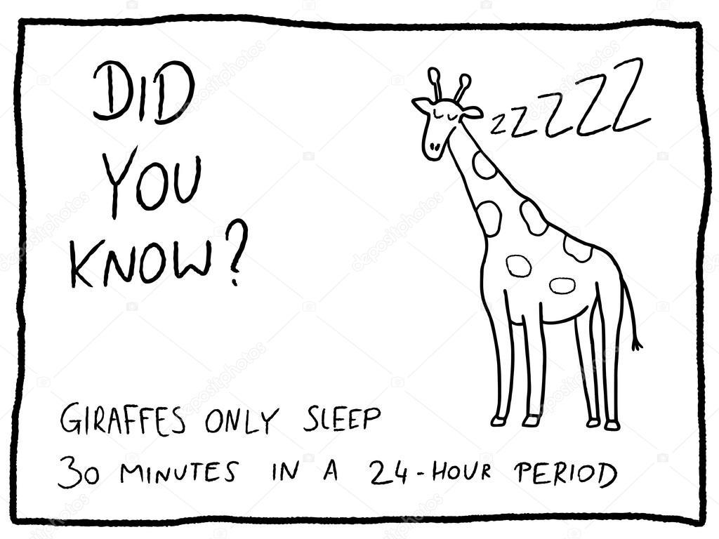 giraffe fun trivia comic u2014 stock vector tupungato 128091910