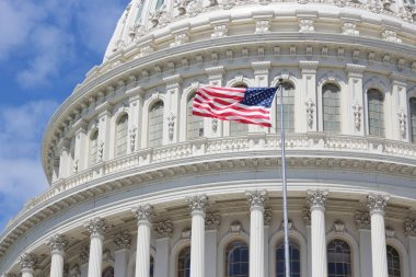 Washington Capitol, United States
