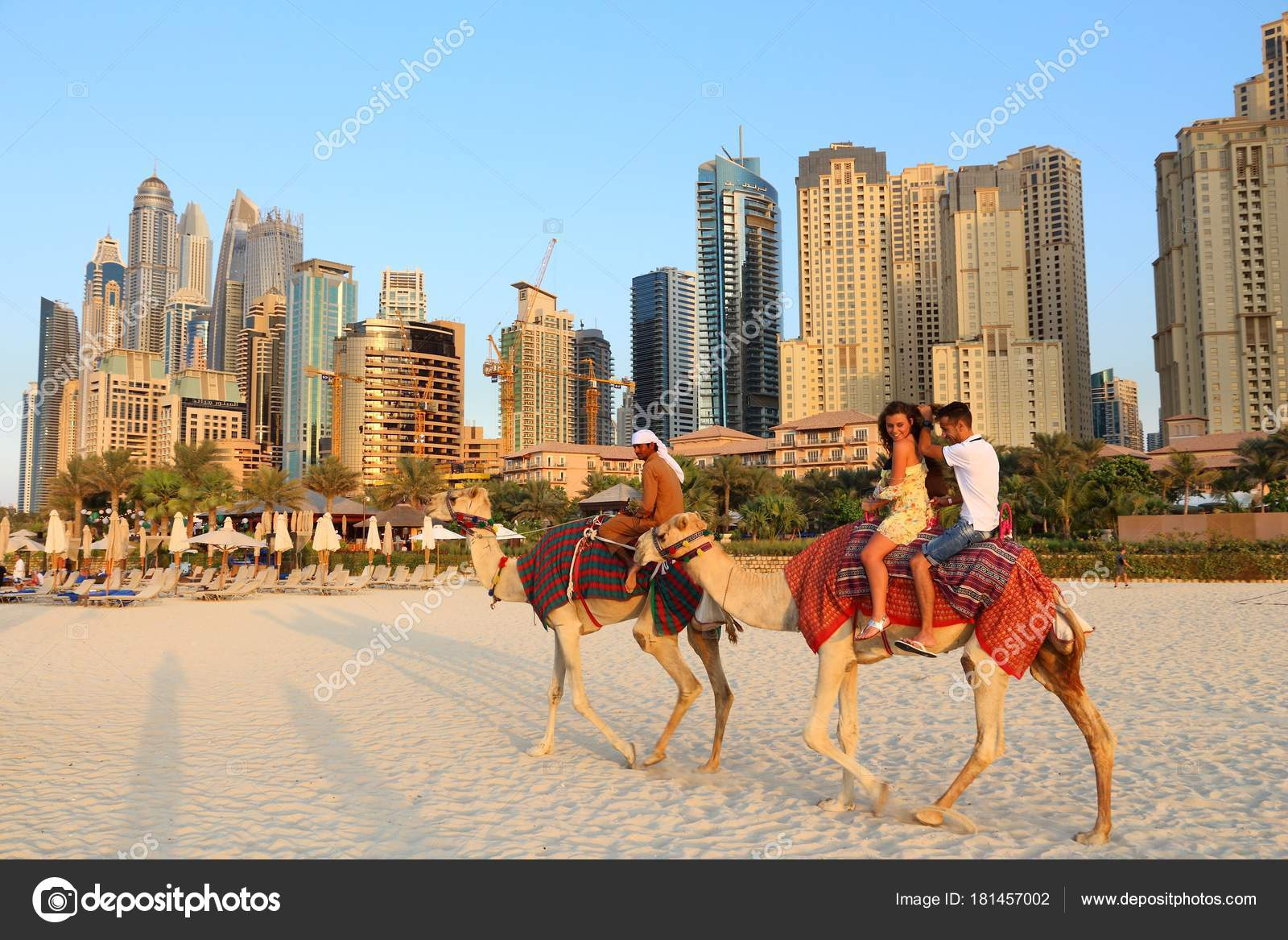 Dubai camel ride stock editorial photo tupungato 181457002 dubai camel ride stock photo altavistaventures Choice Image