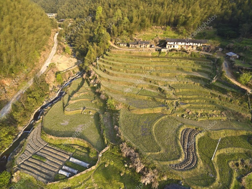Aerial photography at Spring terraced field landscape