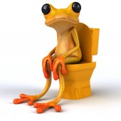 Fun frog in wc  - 3D Illustration