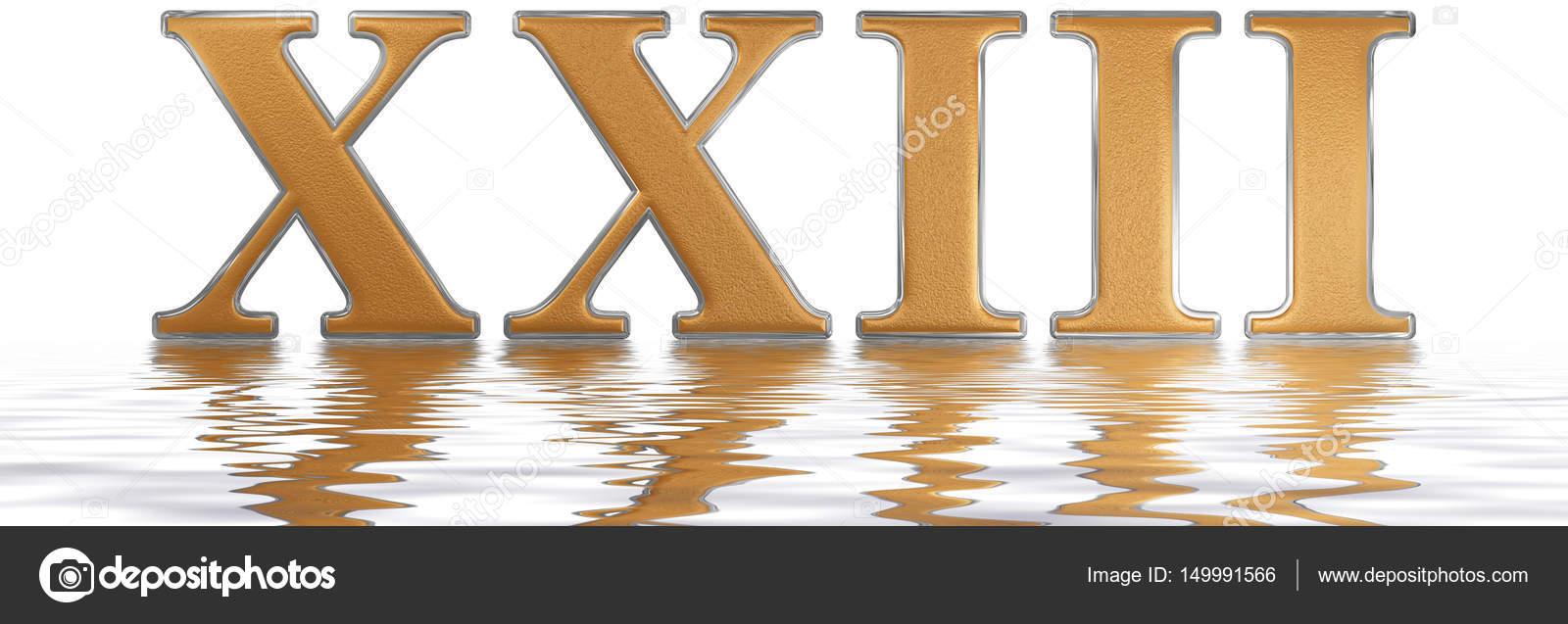 23 Chiffre Romain chiffre romain xxiii, tres et viginti, 23, vingt-trois, reflecte