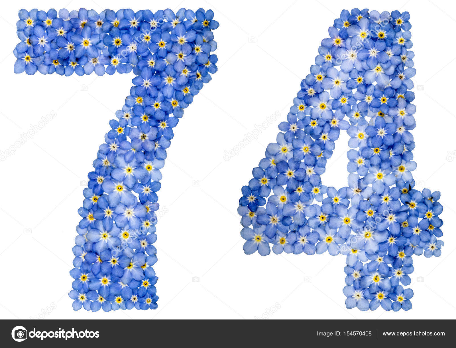 Arabic numeral 74, seventy four, from blue forget-me-not flowers, isolated  on white background — Photo by kostyuchenko