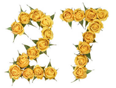 Arabic numeral 27, twenty seven, from yellow flowers of rose, is