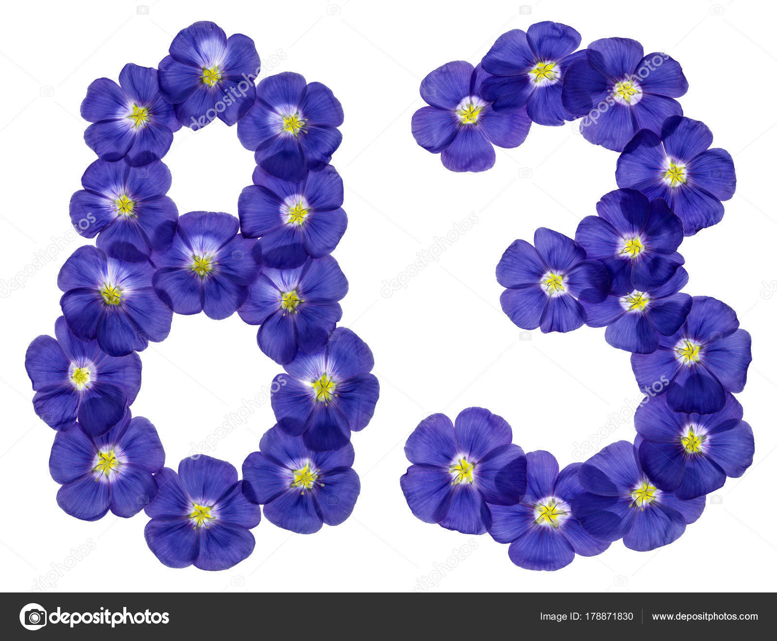 Arabic numeral 83, eighty three, from blue flowers of flax, isol — Stock