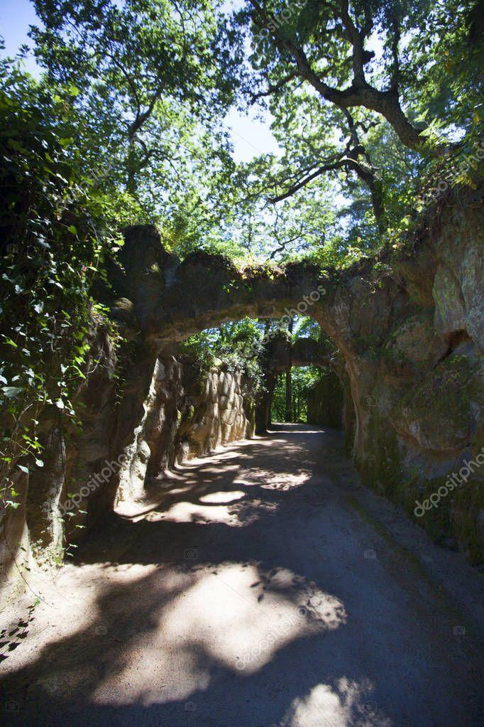Фотообои Sunlit path in Quinta da Regaleira
