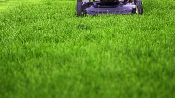Sekačka seká zelenou trávu