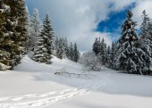 Paesaggio di montagna innevato inverno