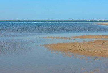 Ustrychne lake  (Lazurne, Kherson Region, Ukraine)