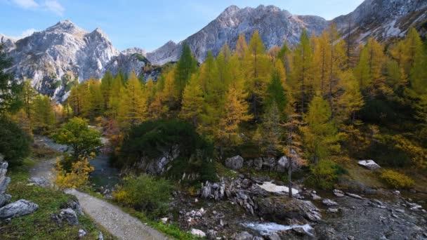 Podzimní pohled na alpský potok z horské turistické stezky do Tappenkarsee, Kleinarl, Land Salzburg, Rakousko. Malebná turistika, sezónní a příroda krásy koncepce scény.