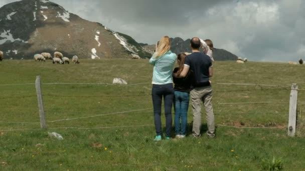 Rodinné stojící nad podpatky hill valley v lesích fotografování