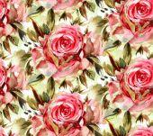 Akvarel růže vzorek