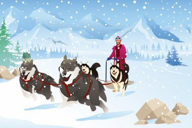 A vector illustration of Man with Dogs Sledding in the Snow During Winter stock vector