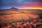 Photo Alice Springs, Australia, nature scenic view