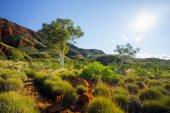 Photo Ormiston Pound, Northern Territory